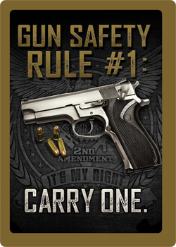 1461 GUN SAFETY #1  SIGN RVREG